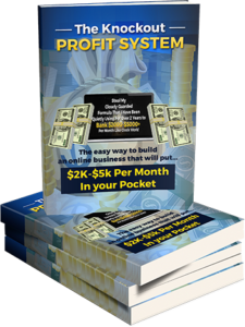 Knockout Profit System