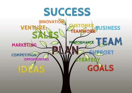 Aspects of Successful Network Marketing Systems
