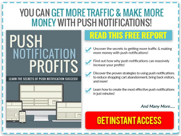 Get More Traffic & Sales With Push Notifications